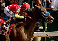 SARATOGA SPRINGS, NY - AUGUST 25: Abel Tasman  #1, ridden by jockey Mike Smith, wins the Personal Ensign Stakes on Travers Stakes Day at Saratoga Race Course on August 25, 2018 in Saratoga Springs, New York. (Photo by Carson Dennis/Eclipse Sportswire/Getty Images)