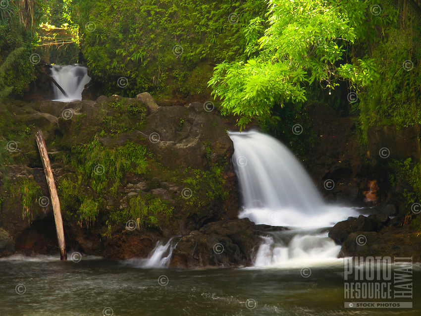 A waterfall pours into Kolekole Stream, where it meets the ocean, Hamakua Coast, Big Island.