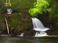 A waterfall pours into Kolekole Stream, where it meets the ocean, Hamakua Coast, Big Island.