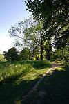 Track through woodland, North Yorkshire countryside, England.