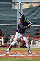 Colorado Rockies Jonathan Piron (3) during an instructional league game against the San Francisco Giants on October 7, 2015 at the Giants Baseball Complex in Scottsdale, Arizona.  (Mike Janes/Four Seam Images)