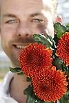 """Foto: VidiPhoto<br /> <br /> TUIL – Hoewel minder uitbundig dan zijn pluizige soortgenoten, is de Paladov Dark een echte topper. Met name in de herfst. De donker-oranje chrysant bezit de warme uitstraling waar consumenten in de aanloop richting winter naar op zoek zijn. De relatief nieuwe snijbloem -""""vorig jaar zijn we er mee begonnen""""- is voor teler Lewis Flowers in het Gelderse Tuil dan ook het bijna duurste product dat zijn 8 ha. grote kassencomplex verlaat, vertelt eigenaar Yorick Leeuwis. Zo'n 25.000 stelen rollen er tussen begin oktober tot en met december wekelijks over de lopende band en vinden via de diverse bloemveilingen hun weg naar de consument. Opmerkelijk genoeg is de Paladov in vrijwel alle Europese landen populair, waaronder ook in Nederland. Overigens is de Paladov jaarrond verkrijgbaar, maar is de 'darkversie' vooral veelgevraagd in het najaar. Wat gewicht betreft moet de Paladov het duidelijk afleggen tegen de robuuste andere soorten, ook daarom voelt de ranke en ietwat mysterieus ogende chrysant zich vooral thuis in sierboeketten. Om de bloem nog meer uitstraling te geven worden de stelen op water geveild."""