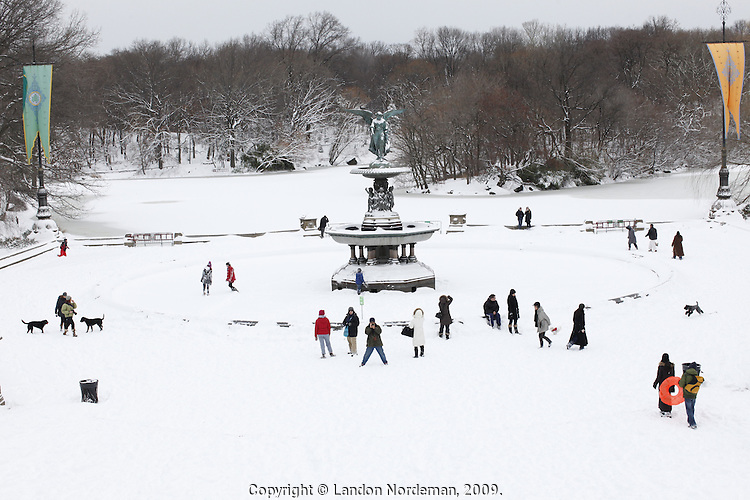 NEW YORK - DEC 20: People enjoyed snow in central park on Sunday December 20, 2009 in New York City. (Photo by Landon Nordeman)