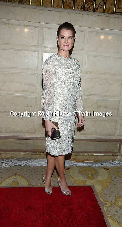 Brooke Shields attends the New York Landmarks Consevancy's 20th Annual Living Landmarks Celebration on November 14, 2013 at the Plaza Hotel in New York City.
