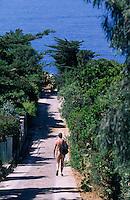 Europe/Provence-Alpes-Côte d'Azur/83/Var/Ile d'Hyères/Ile du Levant: L'allée qui mène au port