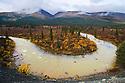 MacMillan River winding through boreal forest in fall, Yukon