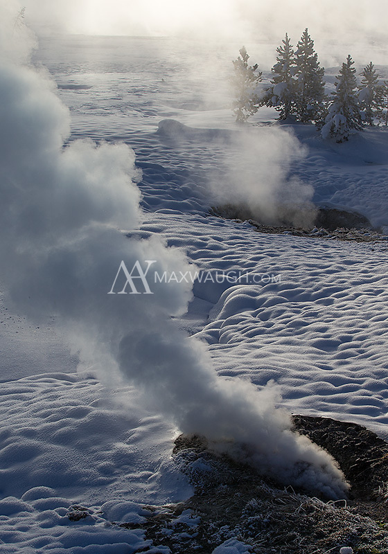 In winter a lot more steam rises from Yellowstone's geyser basins.