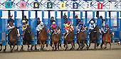 Gotham Stakes - El Kabeir