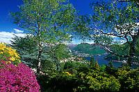 CHE, Schweiz, Tessin, Carona: Botanischer Park San Grato mit Blick auf den Luganer See | CHE, Switzerland, Ticino, Carona: Botanical Park San Grato with view at Lake Lugano
