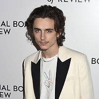 08 January 2020 - New York, New York - Timothee Chalamet at the National Board of Review Annual Awards Gala, held at Cipriani 42nd Street. Photo Credit: LJ Fotos/AdMedia