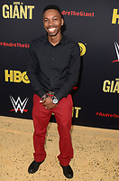 """LOS ANGELES - FEB 29:  Melvin Jackson Jr. at the """"Andre The Giant"""" HBO Premiere at the Cinerama Dome on February 29, 2018 in Los Angeles, CA"""