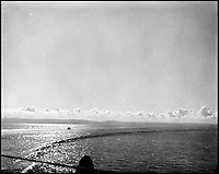 BNPS.co.uk (01202 558833)Pic: CharterhouseAuctioneers/BNPS<br /> <br /> A Swordfish biplane crashing into the sea a few hundred yards off the aircraft carrier HMS Fencer.<br /> <br /> A remarkable wartime photo album that highlights the perilous nature of landing a fighter plane on an aircraft carrier in heavy seas has been unearthed.<br /> <br /> The black and white snaps show several Royal Naval aircraft coming a cropper while attempting to land on board HMS Fencer often in heavy seas.<br /> <br /> One set of images depict a Swordfish biplane crashing into the sea a few hundred yards off the aircraft carrier HMS Fencer.<br /> <br /> Other photos show a Supermarine Seafire about the crash into the superstructure.<br /> <br /> The album will be sold by Charterhouse Auctioneers in Sherborne, Dorset.