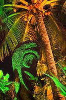 Namotu Island Resort, Fiji.  (Wednesday, March 23, 2011). Kava ceremony tonight. . Photo: joliphotos.com