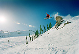 USA, Utah, skier getting big air on the Baldy Shoulder, Alta Ski Resort