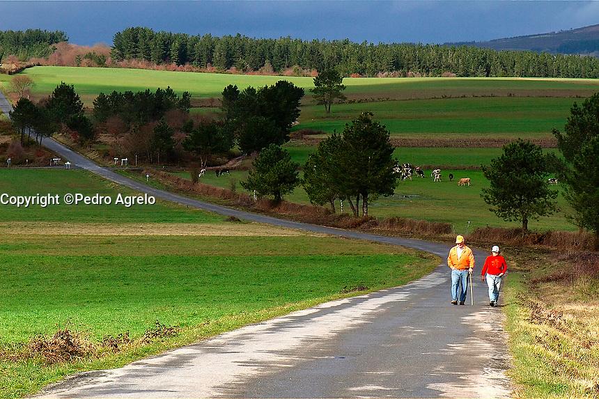 Carretera secundaria en Galicia