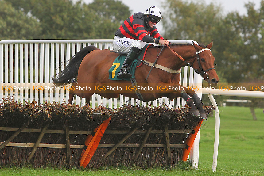 Occasionally Yours ridden by Marc Goldstein in jumping action during the Autumn Handicap Hurdle - National Hunt Horse Racing at Fakenham Racecourse, Norfolk - 25/10/13 - MANDATORY CREDIT: Gavin Ellis/TGSPHOTO - Self billing applies where appropriate - 0845 094 6026 - contact@tgsphoto.co.uk - NO UNPAID USE