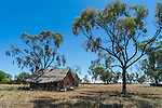 Old farm house in Quirindi countryside, New England, NSW, Australia