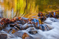 Autumn Color and Cascade