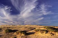 FRANCIA, Bretagna: paesaggio di dune e cielo nuvoloso.