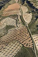olive Aerial views farmland, La Mancha, near Algodor and Ocana, Toledo, Spain