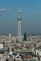 Skytree towers above Tokyo buildings, seen from Nihonbashi, Tokyo, Japan Friday December 4th 2015
