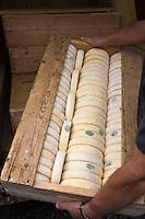 Europe/France/Rhône-Alpes/74/Haute-Savoie/Le Grand-Bornand: Les reblochons fermiers de  Denis Bastard, producteur de reblochon au Marché des producteurs de Reblochon