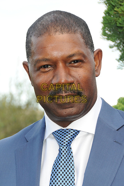 Dennis Haysbert<br /> 6th Annual Oceana SeaChange Gala held at a Private Villa, Laguna Beach, California, USA. <br /> August 18th, 2013<br /> headshot portrait moustache mustache facial hair blue suit tie white shirt <br /> CAP/ADM/BP<br /> &copy;Byron Purvis/AdMedia/Capital Pictures