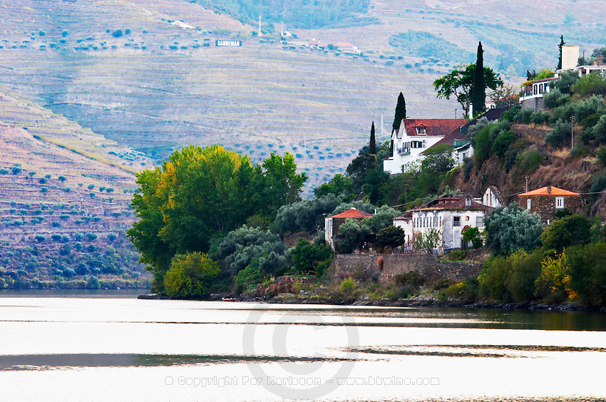 douro river and steep vineyards a quinta douro portugal
