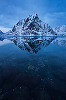 Winter reflection of Olstind mountain peak in fjord, Reine, Moskenesøy, Lofoten Islands, Norway