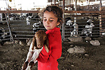 A Bedouin Palestinian girl plays with a goat outside her makeshift tent in the Ein al-Uja village, close to the West Bank city of Jericho, April 27, 2019. Israeli bulldozers had demolished the village in several times, but villagers said that they insist on remaining in their village. Photo by Ayat Arqawy