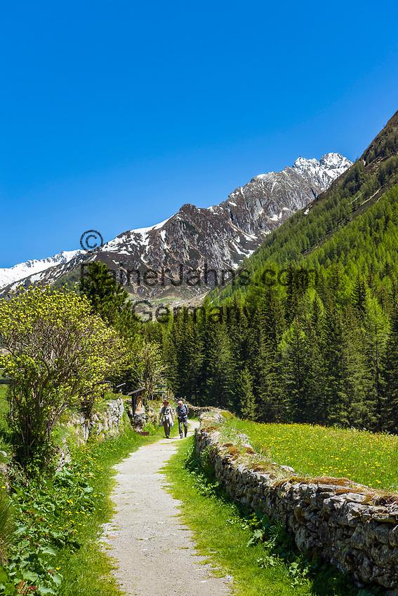 Italy, South Tyrol (Trentino - Alto Adige), Prettau (Predoi) - district Kasern (Casere), hiking trails at valley end of  Tauferer Ahrntal (Valli di Tures e Aurina), at background Venediger Group mountains   Italien, Suedtirol (Trentino - Alto Adige), Prettau - Weiler Kasern: Wanderwege am Ende des Ahrntals, Italiens noerdlichste Gemeinde im Naturpark Rieserferner-Ahrn, im Hintergrund die Berge der Grossvenedigergruppe