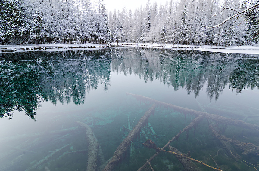 The snowy reflections and the aqua-colored, crystal clear water of Big Springs, Kitch-iti-kipi. Thompson, MI.