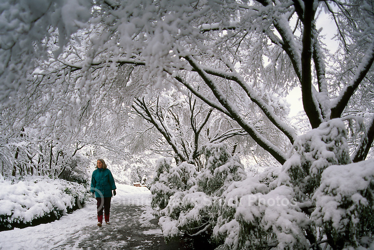 Woman Walking in Queen Elizabeth Park in Winter, in City of Vancouver, British Columbia, Canada (Model Released)
