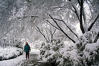Woman Walking in Queen Elizabeth Park in Winter, in City of Vancouver, British Columbia, Canada (Model Released)