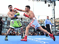 "CARSON, CA- APRIL 20:  Danny Garcia vs Adrian Granados during the Fox Sports ""PBC on Fox"" Fight Night at Dignity Health Sports Park on April 20, 2019 in Carson, California. (Photo by Frank Micelotta/Fox Sports/PictureGroup)"