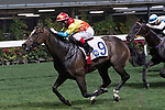 Jockey Dylan Mo Hin-tung riding Travel Comforts completes the Two Challenge Trophy (Handicap) on 29 March 2017, at Happy Valley Racecourse  in Hong Kong, China. Photo by Chris Wong / Power Sport Images