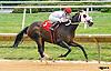 Big Zapple winning at Delaware Park on 9/26/16