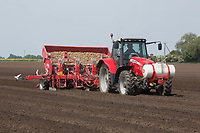 Planting potatoes in the Lincolnshire Fens<br /> &copy;Tim Scrivener Photographer 07850 303986<br /> ....Covering Agriculture In The UK....