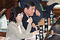 Question and answer session in the Diet's lower house