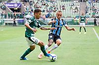 São Paulo (SP), 24/11/2019 - Palmeiras-Grêmio - Partida entre Palmeiras e Grêmio pela 34ª rodada do Campeonato Brasileiro, no Allianz Parque, em São Paulo (SP), domingo (24).