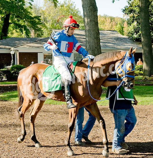 Scotchnwater before The Dover Stakes at Delaware Park  on 10/8/11