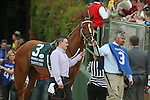 April 12, 2014: #3 Tapiture with trainer Steve Asmussen before the running of the Arkansas Derby at Oaklawn Park in Hot Springs, AR. Justin Manning/ESW/CSM