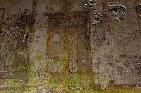 Roma 1 Aprile 2015<br /> Presentato il progetto per il risanamento della Domus Aurea, realizzato dalla Soprintendenza speciale per i beni archeologici di Roma, che consiste nella sistemazione del  giardino pensile,una parcella di 800 mq ,realizzato con tecnologie sostenibili che far&agrave; da &laquo;scudo&raquo; alla  Domus Aurea impedendo le infiltrazioni d'acqua. L'interno della Domus Aurea. Il Grande Criptoportico. Affresco dipinto su un muro<br /> Rome, April 1, 2015<br /> Presented the project for the rehabilitation of the Domus Aurea, fulfilled  by the Superintendence for Cultural Heritage of Rome, which is the arrangement of the roof garden, a plot of 800 square meters, made with sustainable technologies that will be the &quot;shield&quot; at the Domus Aurea for  preventing water infiltration. The interior of the Domus Aurea. The Great cryptoporticus. Fresco Painting on a  wall