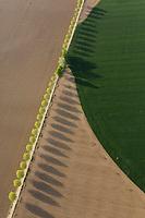 pivot irrigation and road with trees Aerial views, farming, Algodor, Spain La Mancha