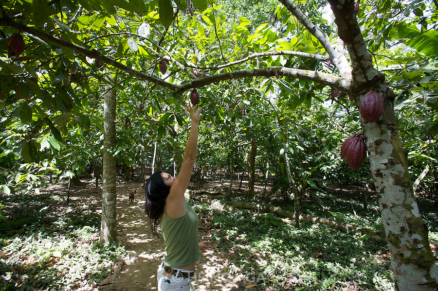 Hacienda Bukare (Cocoa plantation and manufacture). Marketing Director Cristiane Thonon showing me around the plantation.