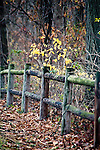 An old wooden fence stands next to fall trees in Missouri.