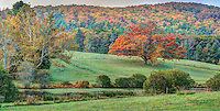 Appalachian Fall
