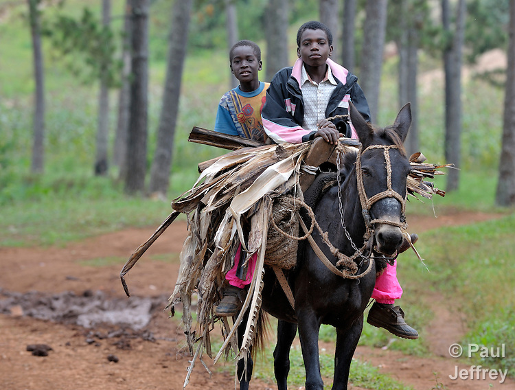 Two boys astride a horse in the Haitian village of Foret des Pins.