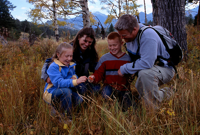 A family of four examine a fall-colored aspen leaf while hiking in Rocky Mtn Nat'l Park, CO.