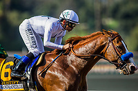 ARCADIA, CA - APRIL 07:  Justify and Mike Smith drive to the finish in the Santa Anita Derby at Santa Anita Park on April 07, 2018 in Arcadia, California.(Photo by Alex Evers/Eclipse Sportswire/Getty Images)